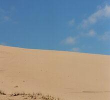 Ska Oregon dunes by Julie Van Tosh Photography