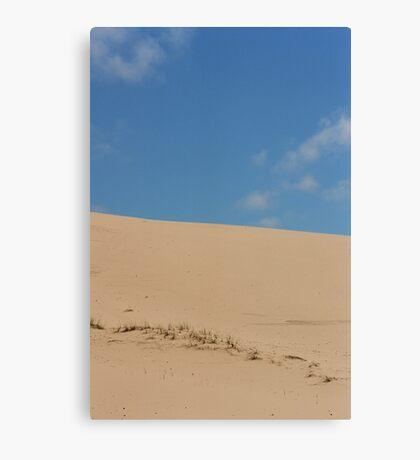 Ska Oregon dunes Canvas Print
