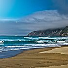 McClure's Beach, Point Reyes, CA by Peter B