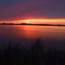 Sunset over Eastlake by Marilyn Bell