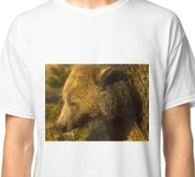 Grizzly Sow-Signed-4855 Classic T-Shirt