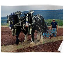 National Horse Ploughing Championship Somerset October 2011 Poster