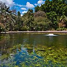 Lake at Botanic Gardens Brisbane Queensland Australia by PhotoJoJo
