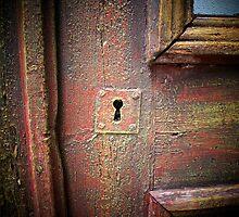 Desire to unlock the door to success... by Rita  H. Ireland