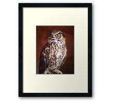 Great Horned Owl in a perfect portrait pose on a summers' day  Framed Print