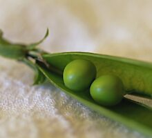 Two Peas in a Pod by Jackie Andress
