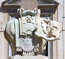 Elefante en Piazza sopra Minerva by Ben Fatma Marc