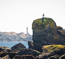 Yarmouth Lighthouse scenery by Shawn Bourque