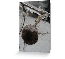 Ice Twin Greeting Card