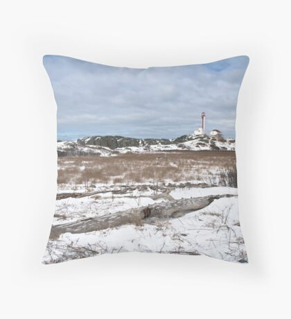 Cape Forchu winter scene Throw Pillow