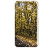 Back Roads #44564 iPhone Case/Skin