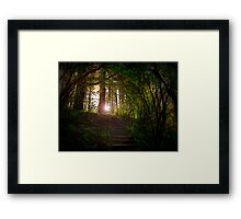 On The Way To His Glory Framed Print