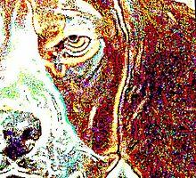 Watchdog by Shelda Whited
