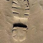 Footprints ~ iPhone cover by Greta  McLaughlin