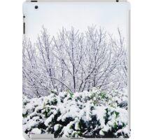 Winter Zone iPad Case/Skin
