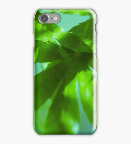 Sweet Maple Syrup iPhone Case/Skin