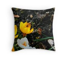 How's the Nectar Over There? Throw Pillow