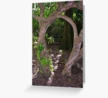 Trees in Glamis Castle Grounds Greeting Card