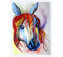 Colorful horse abstract Photographic Print