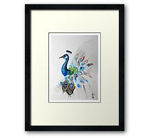Beatiful peacock painting Framed Print