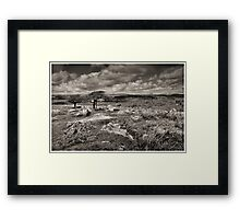 Two Trees at Combestone Tor Framed Print