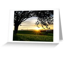Sunset under the Tree Greeting Card