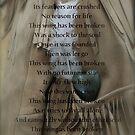 This wing has been broken by DreamCatcher/ Kyrah Barbette L Hale