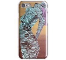 Lib 1140 iPhone Case/Skin