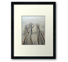 Tidal Trees Framed Print