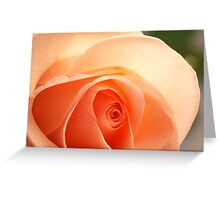 Light and romantic Greeting Card