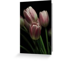 Silky Pink Greeting Card