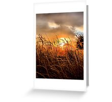 Sunrise in Texas Greeting Card