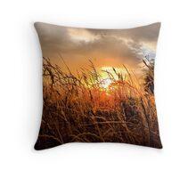 Sunrise in Texas Throw Pillow