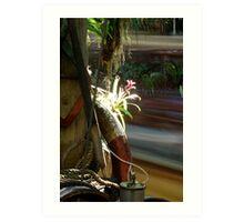 Jungle Flower Art Print