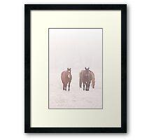 Equine Frost Framed Print