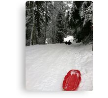 Red sleigh Canvas Print
