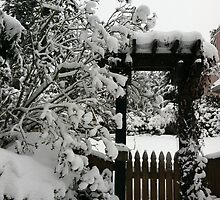 Snow fence by Julie Van Tosh Photography