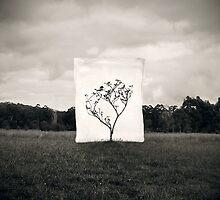 Tree by James McKenzie