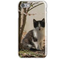 I am just going to sit here iPhone Case/Skin