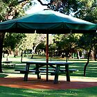 Picnic table - Whiteman Park  Perth Western Australia by Debbie-anne