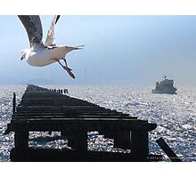 Pier to Alcatraz Photographic Print