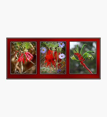 Three Ladies dressed in Red Photographic Print