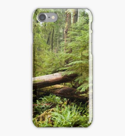 Cathedral Grove iPhone Case/Skin