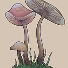 Simple Mushrooms  by Rayne Karfonta