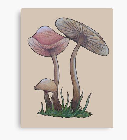 Simple Mushrooms  Canvas Print