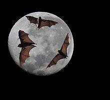 Batty Moon by Ian Creek
