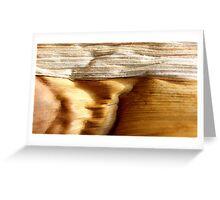 Desert Canyons Greeting Card