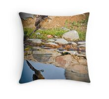 Landing Gear Down Throw Pillow