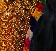 Bejewelled Elephant by Stephen Brown