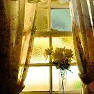 the window sill.. by JOSEPHMAZZUCCO
